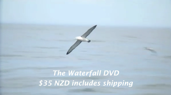 The Waterfall DVD